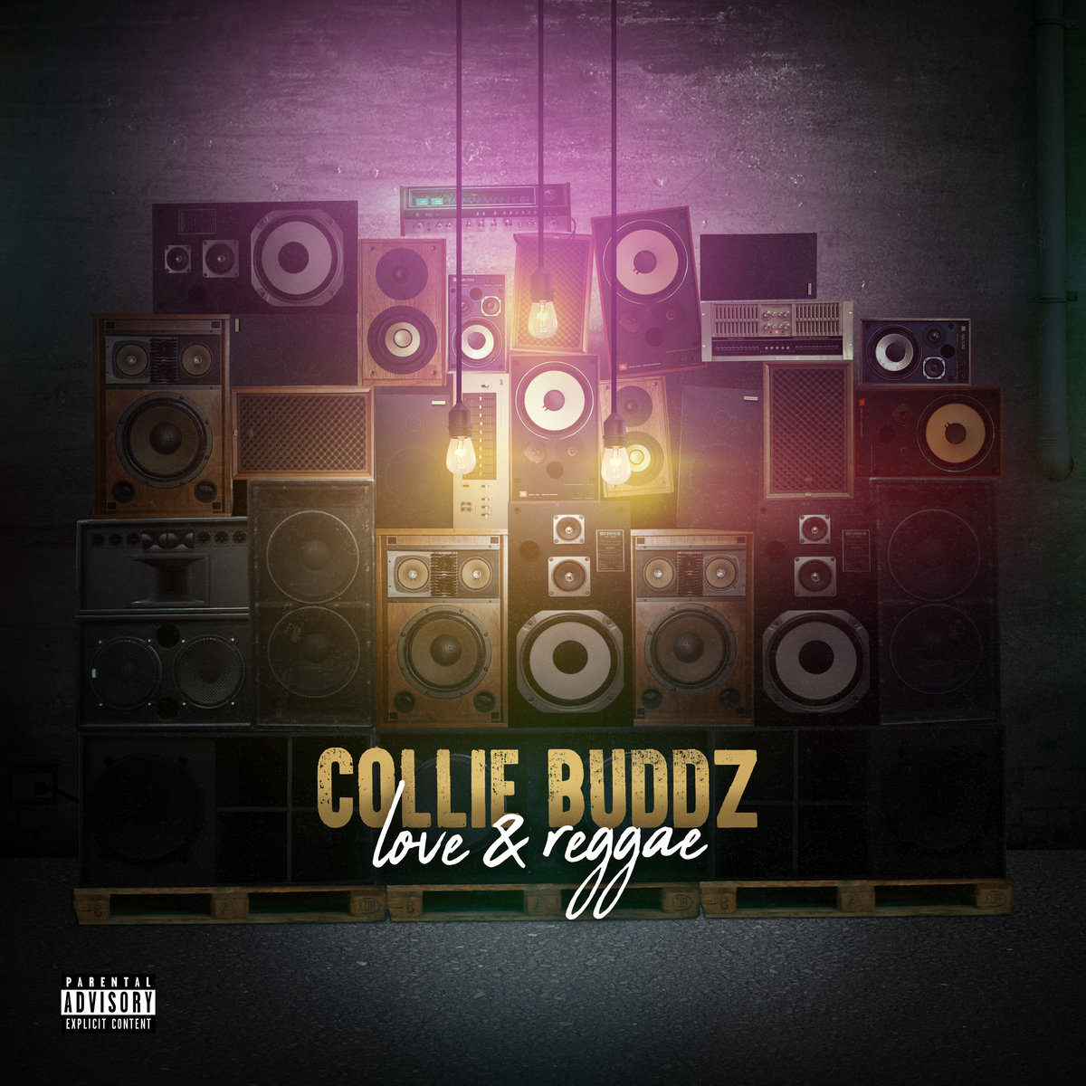 Love and Reggae de Collie Buddz